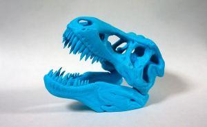 T-Rex Skull ティラノザウルスの頭蓋骨をプリント
